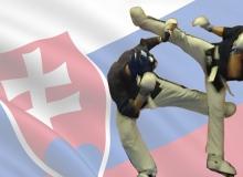 Yoseikan Fighting Systém - Súťaž